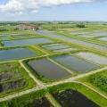 Volgelmeerpolder, voormalige vuilnisbelt in Waterland, Noord-Holland