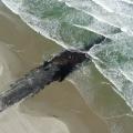 Golfbreker ter bescherming van de kust van Vlieland
