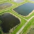Volgelmeerpolder bij Broek en Waterland: vroeger een giftbelt, nu proefbassins voor natuurontwikkeling