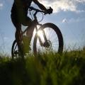 Mountainbiker op de Veluwe, Gelderland