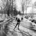 Schaatsers op de route van de Elfstedentocht tussen Sloten en Stavoren, Friesland
